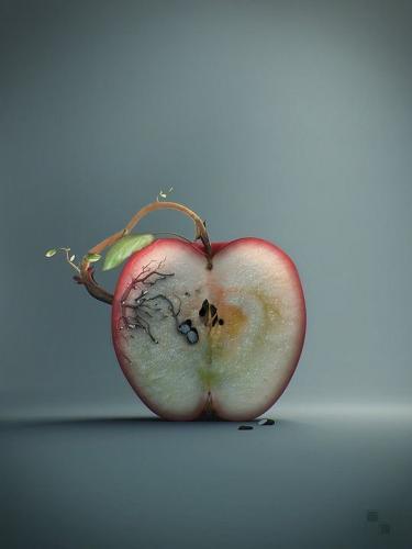 69b66c31bac0bf4c52a69a7662e60ee7--apple-art-organic-art
